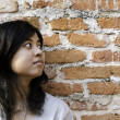 Petty young brunette woman  against a Brick Wall — Foto de Stock