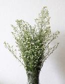 造花の花瓶に白い花 — ストック写真