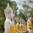 Buddha statues at Wat Yai Chai Mongkol in Ayutthaya, Thailand — Stock Photo