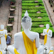 Back of Big Buddha at Old Temple Wat Yai Chai Mongkhon, Ayuthaya — Stock Photo