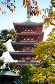 Five storied Pagoda of Senso-ji temple, Asakusa, Tokyo, Japan — Stock Photo