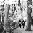 Foto Stock: Couple walking in autumn forest
