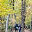 Foto Stock: Couple in colorful autumn forest