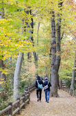 Couple in colorful autumn forest — Stock Photo