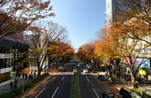 TOKYO - NOV 24: People on Omotesando Street on November 24. 2013 — Stock Photo