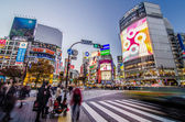 TOKYO - NOVEMBER 28: Pedestrians at the famed crossing of Shibuya — Foto de Stock
