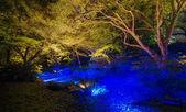 Seasonal illuminations at Rikugien Garden, Tokyo, Japan — Stock Photo