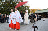 TOKYO,JAPAN-NOV 20 :A Japanese wedding ceremony at Shrine — Stok fotoğraf