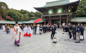 TOKYO, JAPAN-NOV 20 :A Japanese wedding ceremony at Shrine — 图库照片