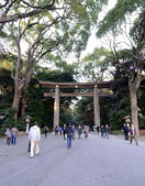 TOKYO - NOV 23: The Torii Gate standing at the entrance to Meiji Jingu Shrine — Stock Photo
