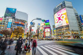 TOKYO - NOVEMBER 28: Pedestrians at the famed crossing of Shibuya district — Stock Photo