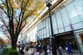 TOKYO - NOV 24: People shopping at Omotesando Hills, Tokyo, Japan — Stock Photo