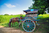 Horse carriage in Bagan, Myanmar  — Stock Photo