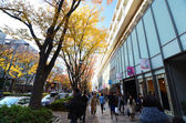 TOKYO - NOVEMBER 24: People shopping around Omotesando Hills  — Stock Photo