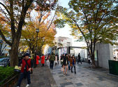 TOKYO - NOV 24: People shopping around Omotesando Hills  — Stock Photo
