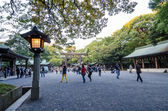 Tokio, japón - 23 de noviembre de 2013: turista visita la puerta torii — Foto de Stock