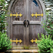 Wooden door in castle — Stock Photo #49671869