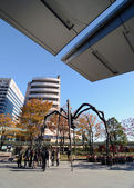 Tokyo, Japan - November 23, 2013: People Visit The Spider Sculpture In Roppongi Hills — Stock Photo
