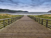 Wooden walkway to the sea — Stock Photo