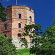 Stock Photo: Gediminas Tower is only remaining part of Upper Castle
