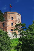 Gediminas Tower is the only remaining part of the Upper Castle — Stock Photo