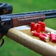 Shotgun with cartridges - Foto de Stock