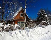 Orman kış aylarında kabin — Stok fotoğraf