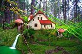 Maison aux champignons en forêt — Photo