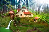 Mushroom cottage in forest — Stock Photo