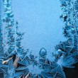 Frost window — Stock Photo
