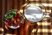 Beer crayfish — Stock Photo