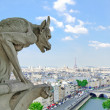 Gargoyle in Notre Dame Cathedral, Eiffel Tower on background. — Stock Photo #12226565