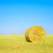 Hay roll, blue sky and yellow field in summer. Tuscany — Stock Photo