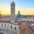 Siena sunset panoramic view. Cathedral Duomo landmark. Tuscany, — Stock Photo #15341219