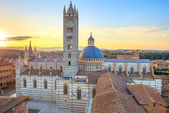 Siena sunset panoramic view. Cathedral Duomo landmark. Tuscany, — Stock Photo
