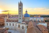 Siena sunset panoramic view. Cathedral Duomo landmark. Tuscany, — Stock Photo