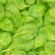 Fresh Organic Baby Spinach background or texture. Raw food. - Stock Photo