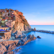 Manarola village, rocks and sea at sunset. Cinque Terre, Italy — Stock Photo #18486055