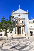 Igreja da misericordia église et glycine arbre. aveiro, portugal — Photo