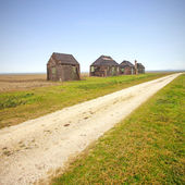 Traditional rural wooden huts in italian countryside. Country road. — Stock Photo