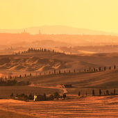 Siena, rolling hills on sunset. Rural landscape with cypress trees. Tuscany, Italy — Stock Photo
