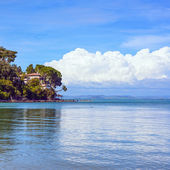 Headland, trees, and pier or jetty on a blue ocean. Beach in Argentario, Tuscany, Italy — Stock Photo