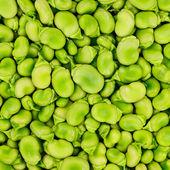 Fava eller bondbönor bakgrund eller mönster. — Stockfoto