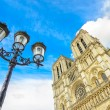 Notre Dame de Paris Cathedral on Ile Cite island and street lamp. Paris, France — Stock Photo