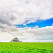 Mont Saint Michel monastery landmark and green field. Normandy, France — Stock Photo