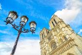 Notre Dame de Paris Cathedral on Ile Cite island and street lamp. Paris, France — Stock Photo
