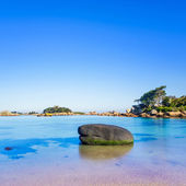 Ploumanach, rock and bay beach in morning, Brittany, France. — Stock Photo