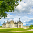 Chateau de Chambord, Unesco medieval french castle and tree. Loire, France — Stock Photo #27103125