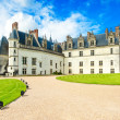 Chateau de Amboise medieval castle, Leonardo Da Vinci tomb. Loire Valley, France — Stock Photo