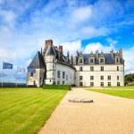 Chateau de Amboise medieval castle, Leonardo Da Vinci tomb. Loire Valley, France — Stock Photo #29575535